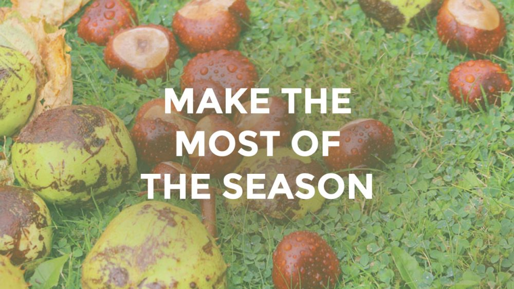 Make The Most Of The Season
